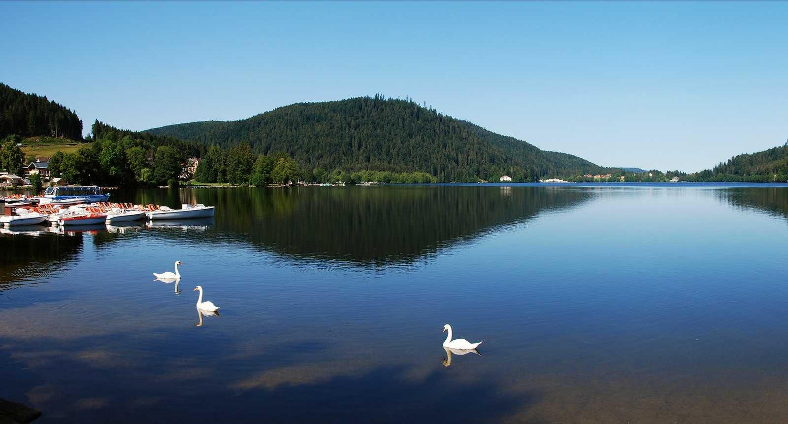 Vosges sam et elise for Camping gerardmer piscine